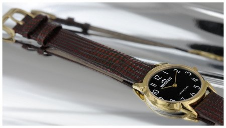 Zegarek Bisset BSAD61 GABX 03BX Safona
